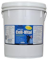 Kohnkes Own Cell Vital