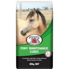 T&R Pony Maintenance Cubes