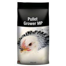 LM Pullet Grower