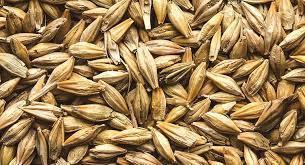 Barley Whole