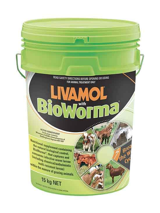 Livamol with BioWorma