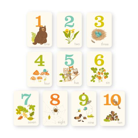 Counting Card Set - Woodland Friends