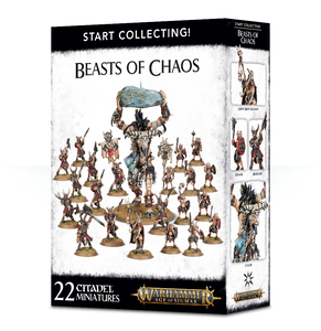 Vakue set miniatures Beasts of Chaos AoS Bristol Table top wargaming