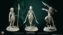 Load image into Gallery viewer, 3D printed Resin Miniatures-female-troll