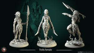 3D printed Resin Miniatures-female-troll
