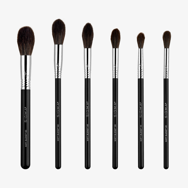 Sigma Beauty | Soft Blend Brush Set