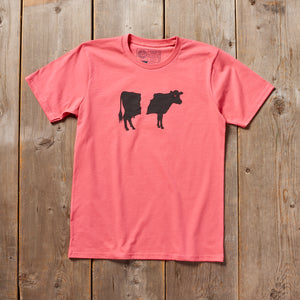 Belty the Cow Vermont tshirt on coral. Artist designed belted cow VT t-shirt.
