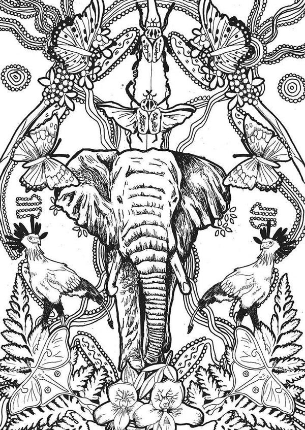 Color at home Illustration - Elephant