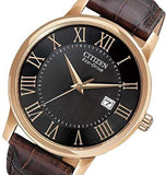 Men's Citizen Eco Drive Black Dial Brown Leather Watch. Model  No. BM6759-03E
