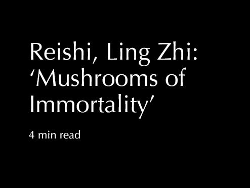 Reishi, Ling Zhi: 'Mushrooms of Immortality'