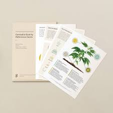 Goldleaf Cannabis Quality Reference Cards - Tribe CBD + Cannabinoids