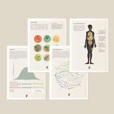 Goldleaf Medical Cannabis Reference Cards - Tribe CBD + Cannabinoids