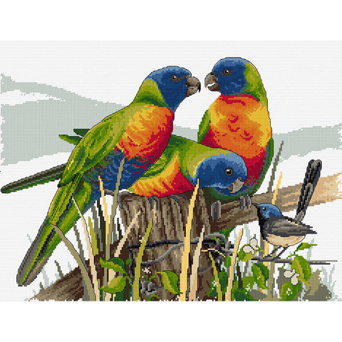 Lots of Lorikeets - Cross Stitch Chart