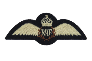 RAF Service Dress Wing with King's crown (4344138006600)