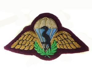 SOUTH AFRICAN PARACHUTE WINGS (4344173920328)
