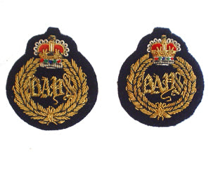 QUEENS DRAGOON GUARDS COLLAR BADGES (BAYS) (4334351089736)