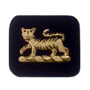 PRINCESS OF WALES NO.1 ARM BADGE (4334328053832)