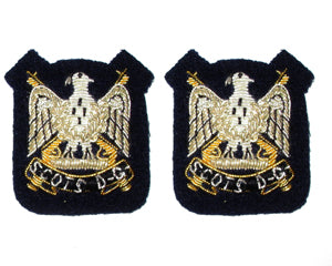 ROYAL SCOTS DRAGOON GUARDS MESS DRESS EAGLES (4334352695368)