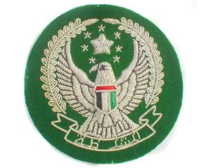 UNITED ARAB EMIRATES CAP BADGE (4334433599560)