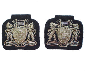 WESTMINSTER DRAGOONS COLLAR BADGES (4334353317960)