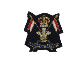 9th / 12th Lancers Blazer Badge (4344219336776)