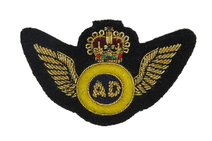 AIR DESPATCH ARM BADGE GOLD WINGS NO.1 ON BLACK (4344225464392)