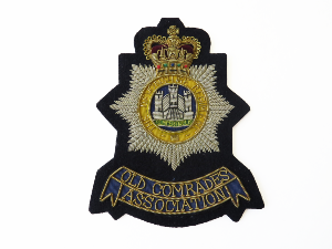 DEVONSHIRE Regiment BLAZER BADGE (4334344437832)