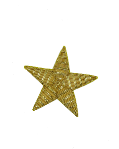 Gold Plated Star (4334672019528)