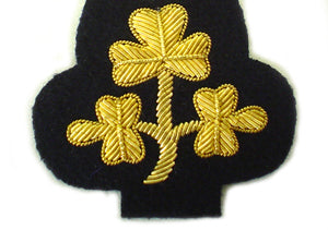 Irish Deputy Lord Lieutenant Cap Badge (4344131911752)