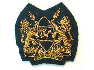 KENYAN ARMS BADGE (4334418821192)