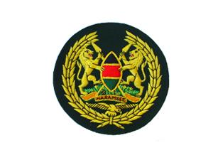 KENYAN AIR FORCE ARM BADGE IN SILKS (4334418067528)