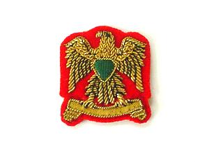 LIBYA ARMY RANK EAGLES (4334421868616)