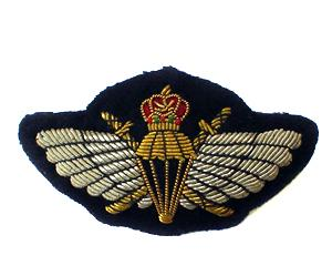 OMAN SPECIAL FORCES WINGS (4334427340872)