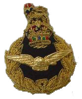 RAF Air Rank Beret Badge with King's Crown (4344137056328)