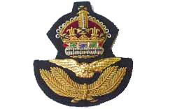 RAF Officer's Beret Badge with King's Crown (4344137416776)