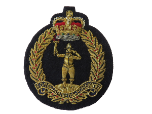ROYAL OBSERVER CORPS BLAZER BADGE (4334347255880)