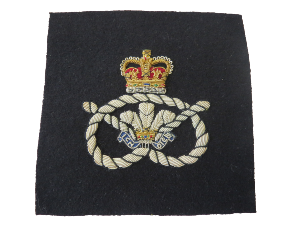 STAFFORDSHIRE REGIMENT BLAZER BADGE (4334348369992)