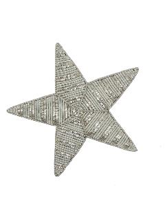 Silver Plated Star (4334671593544)