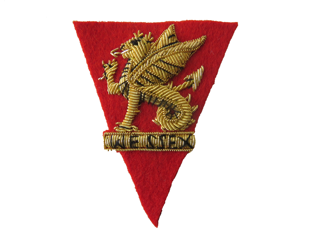 WESSEX REGIMENT VOLUNTEERS BERET BADGE (4344063819848)