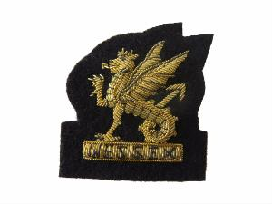 WESSEX BRIGADE BERET BADGE (4334343290952)