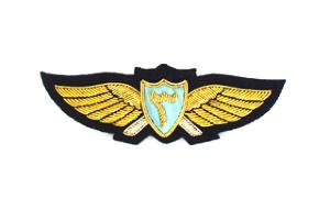 YEMEN AIR FORCE WINGS (4334434451528)