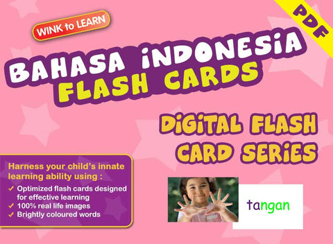 WINK to LEARN Bahasa Indonesia Online Digital Flash Cards Series