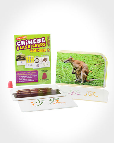 WINK to LEARN Chinese Flash Cards - Beginner 3