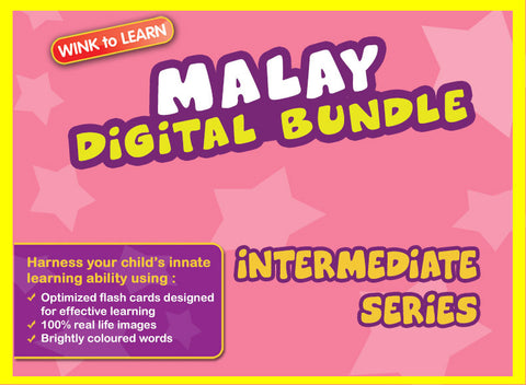 WINKtoLEARN Malay Digital Bundle - Intermediate (Streaming Videos & Digital Flashcards)