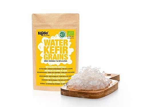 Kefirko Water KEFIR Kit 1400ml with Organic Grains