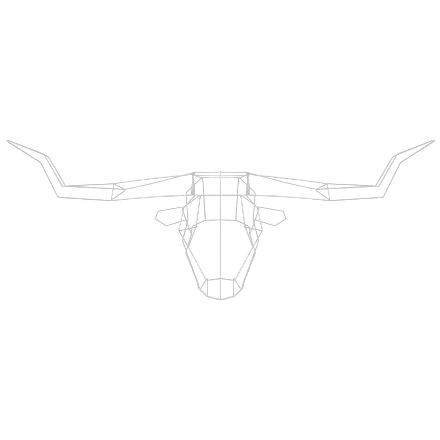 Longhorn Wire Wall Decor