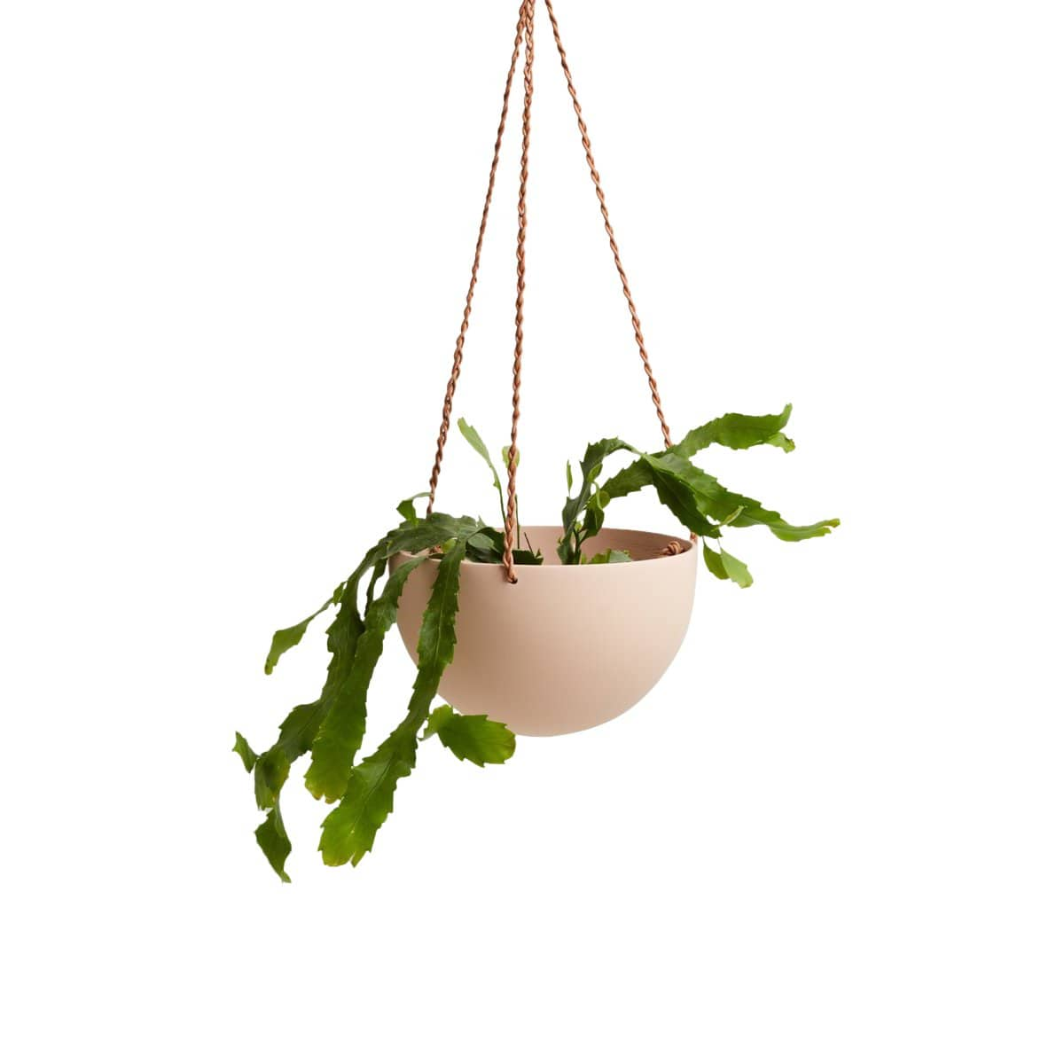 Capra Designs Planters, Pots + Vases Salt Block Color Dome Hanging Planter