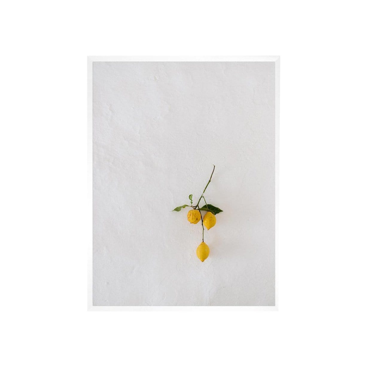 Carley Rudd Photography + Prints 11 x 14 / unframed Mallorca Lemon Print