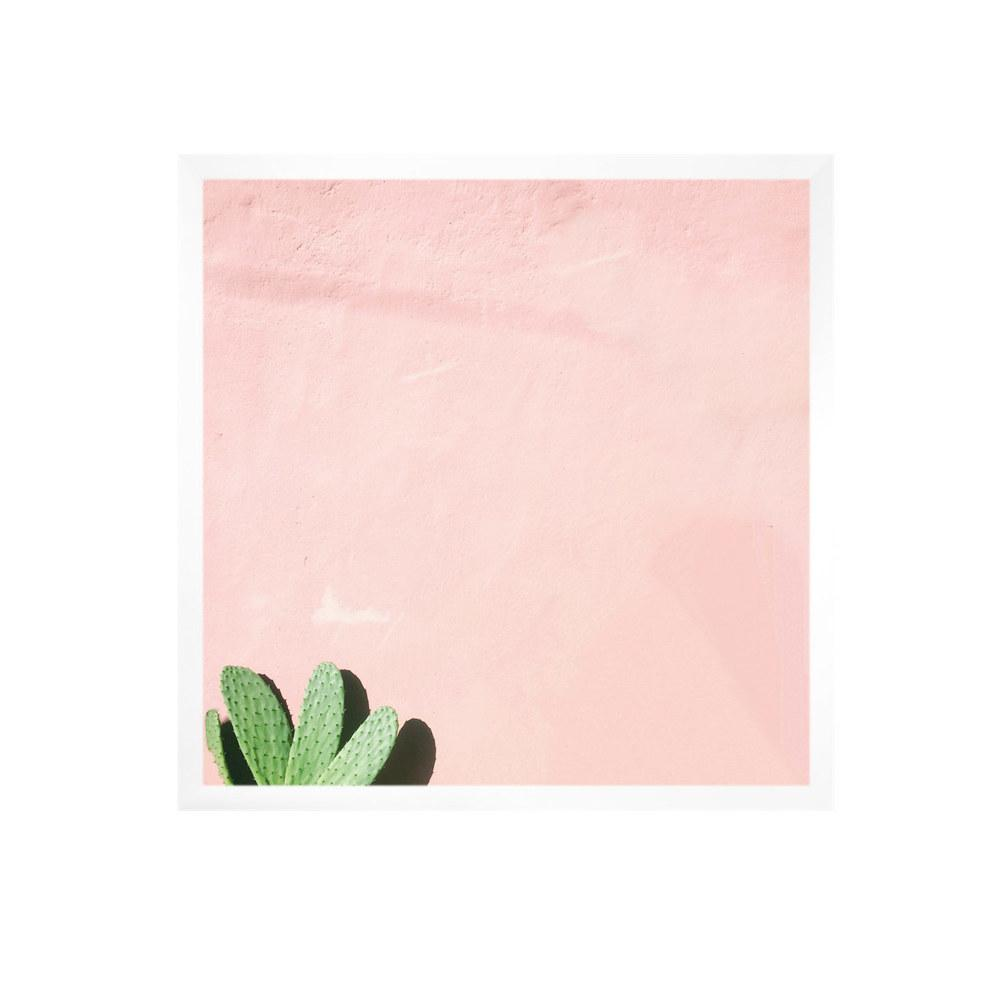 Carley Rudd Photography + Prints unframed / 8 x 8 Cactus on Pink Print