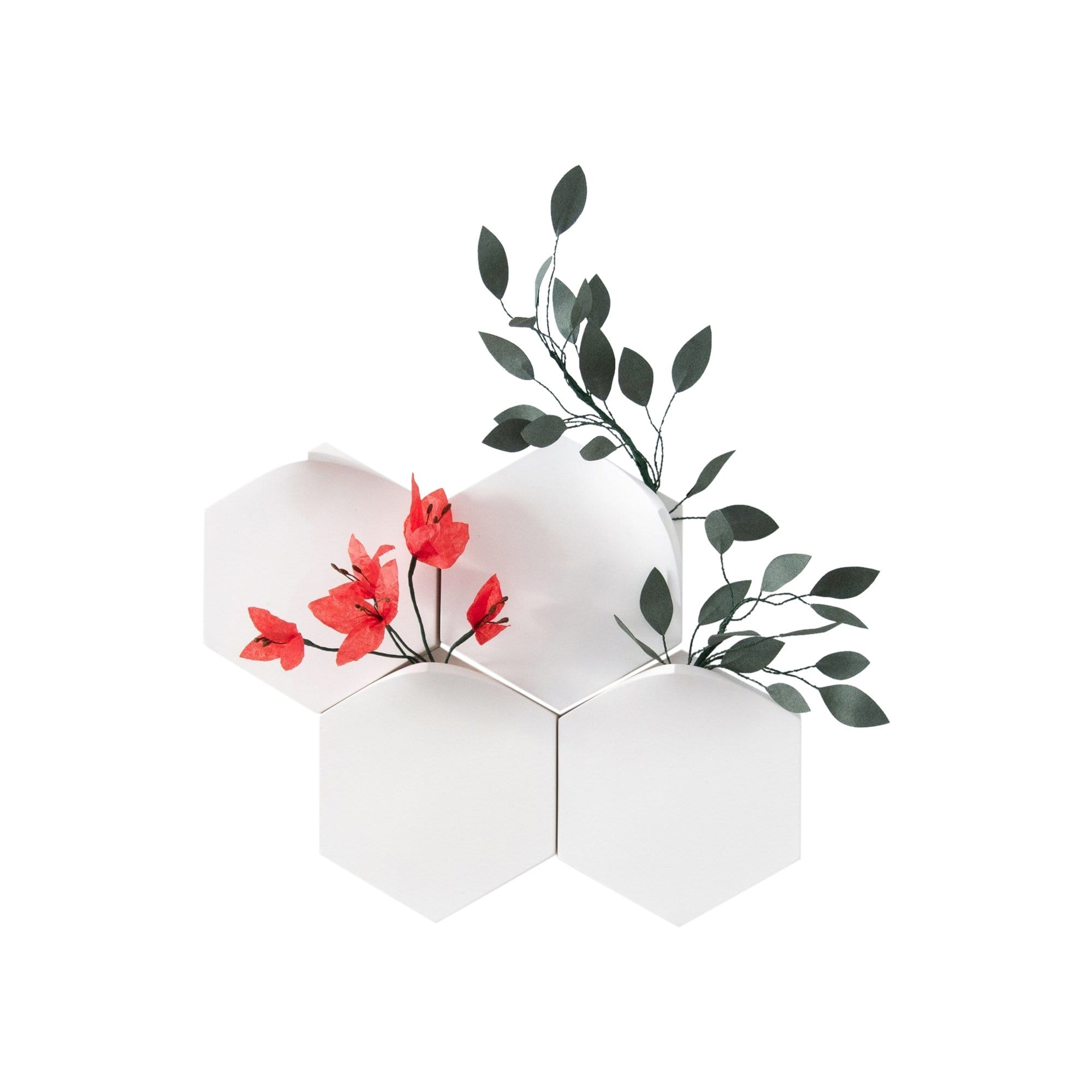 Extra&ordinary Design Wall Decor Hexagonal Wall Mount Vase